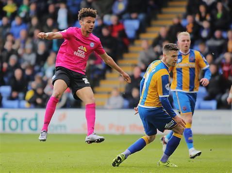 Lee Angol hits his second and Poshs third goal v Shrewsbury